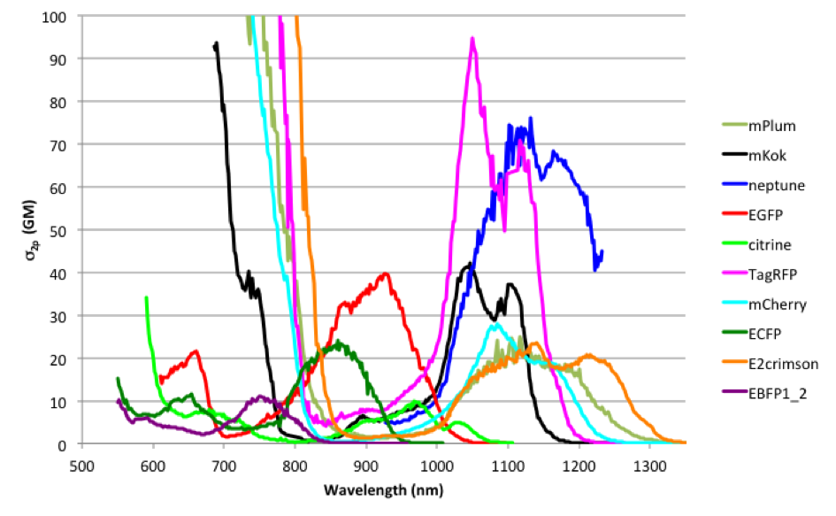 Compiled absorption spectra from drobizhev